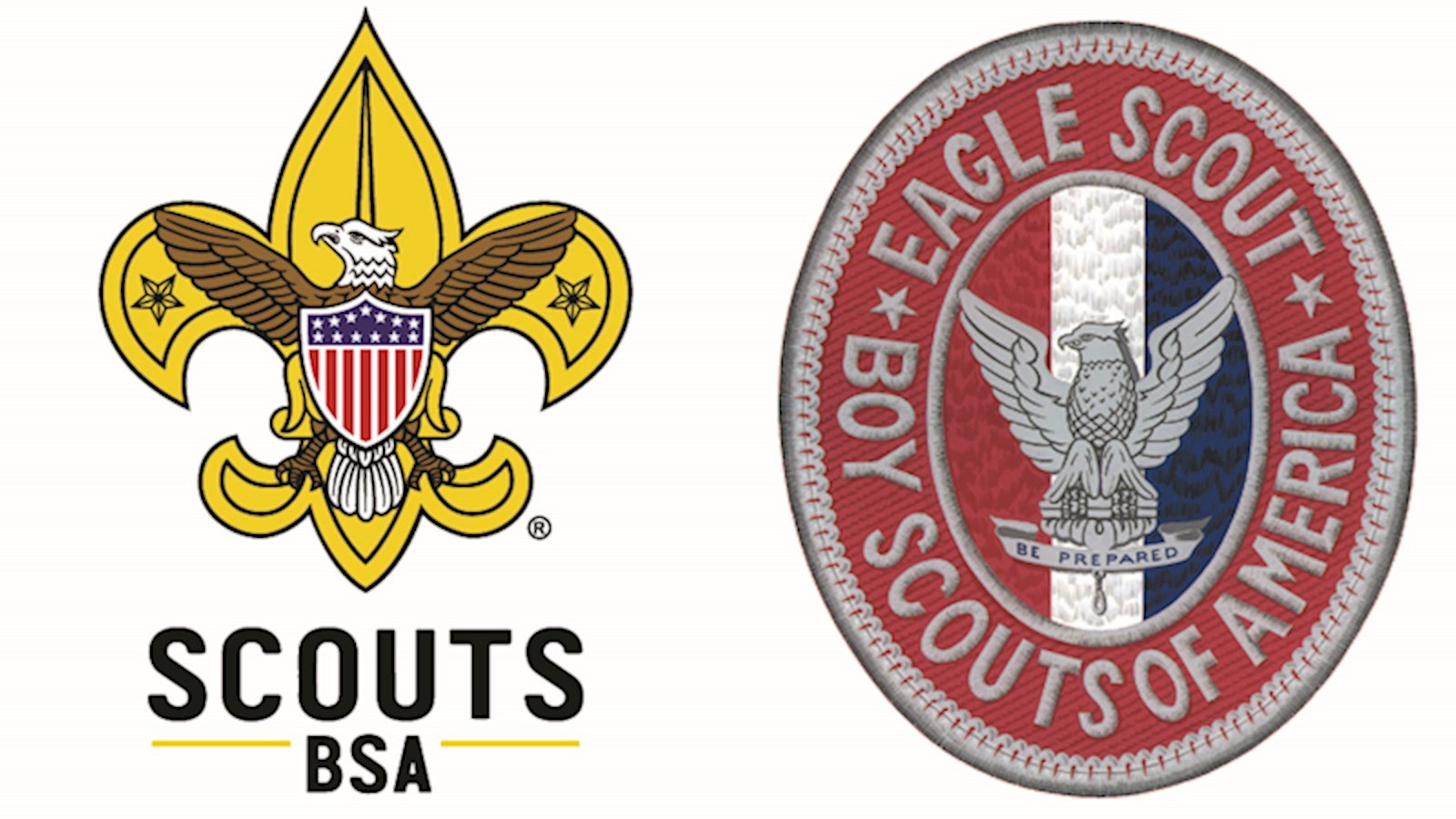 Image result for Scouts BSA